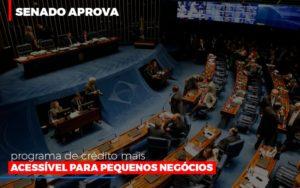 Senado Aprova Programa De Credito Mais Acessivel Para Pequenos Negocios Blog Wrocha Contabilidade - Serviços Contábeis em Campinas | Aurora Contabilidade